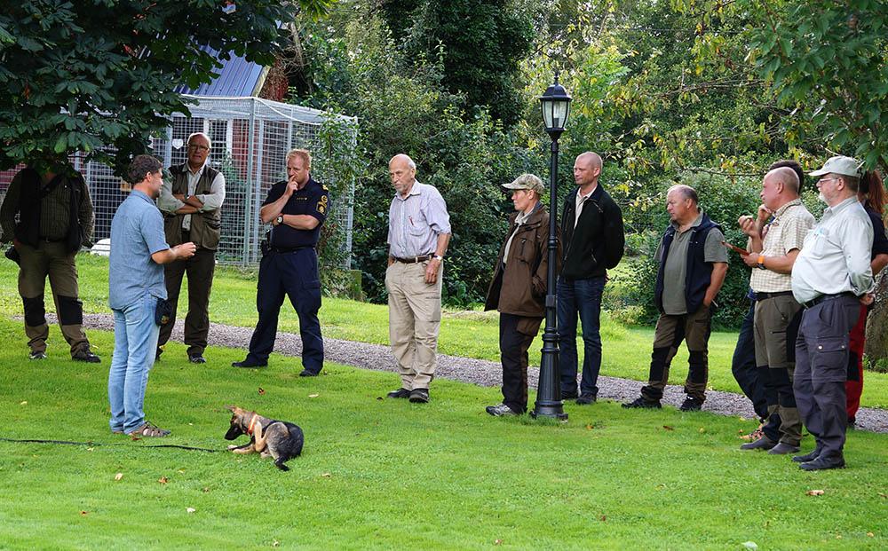 Jens Frank visar markeringsövningar med en 15 veckor gammal valp i trädgården hos Germund för intresserade länsansvariga jägare. Foto: Germund Eriksson