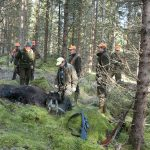 När jägarna gör jobbet åt storskogsbruket borde det föranleda en klapp på axeln istället för hot om uppsägning av jaktarrenden, skriver debattörerna. (Jägarna på bilden har ingen direkt koppling till artikeln) Foto: Jan Henricson