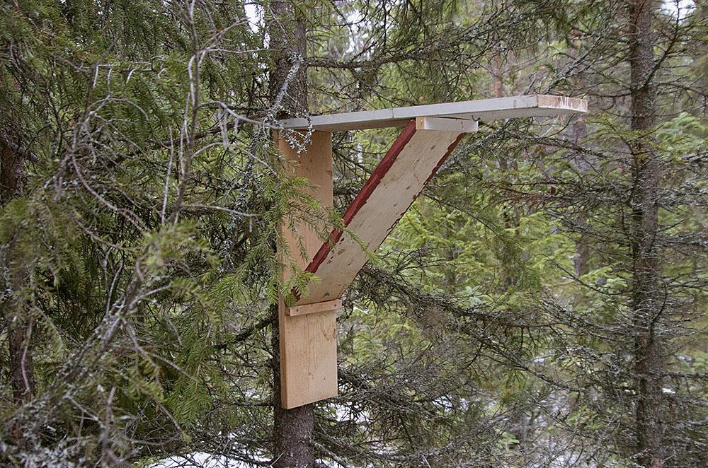 En hylla att ställa fällan på är enkel att tillverka med hjälp av en skruvdragare och några brädlappar.