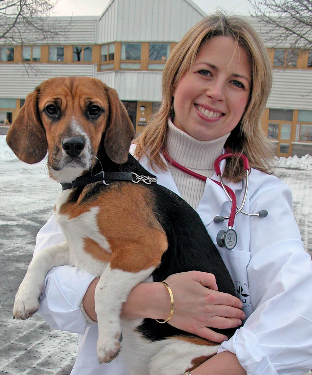 Ragnvi Hagman forskar om livmoderinflammation på SLU. Foto: Pauline Snoeijs