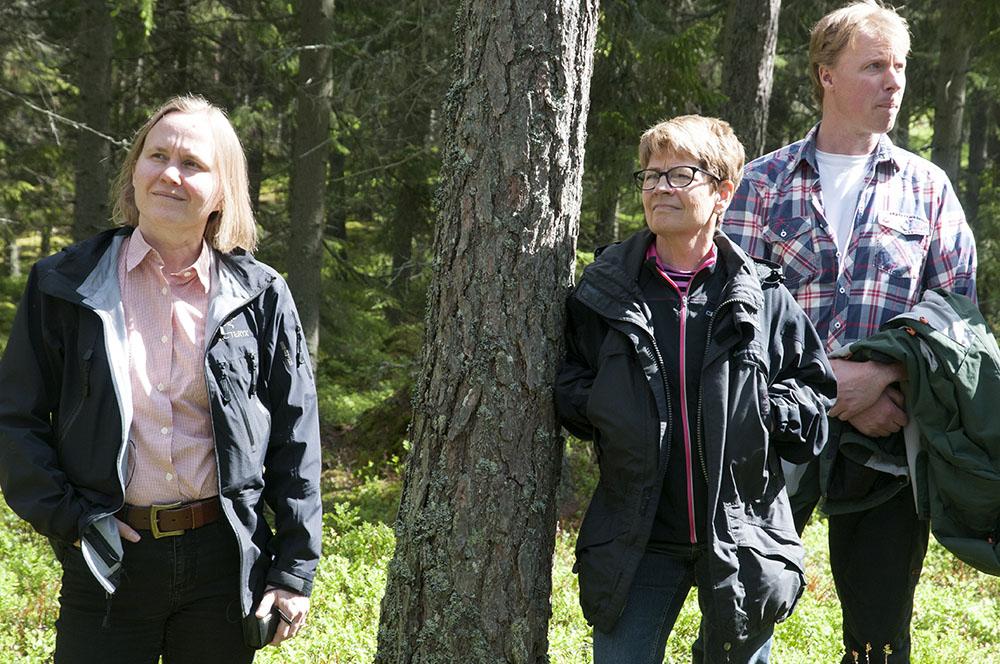 Projekt Mera tall är ett nationellt projekt som leds av Skogsstyrelsen. I mitten Skogsstyrelsens generaldirektör Monika Stridsman under en exkursion i projektområdet. Foto: Jan Henricson