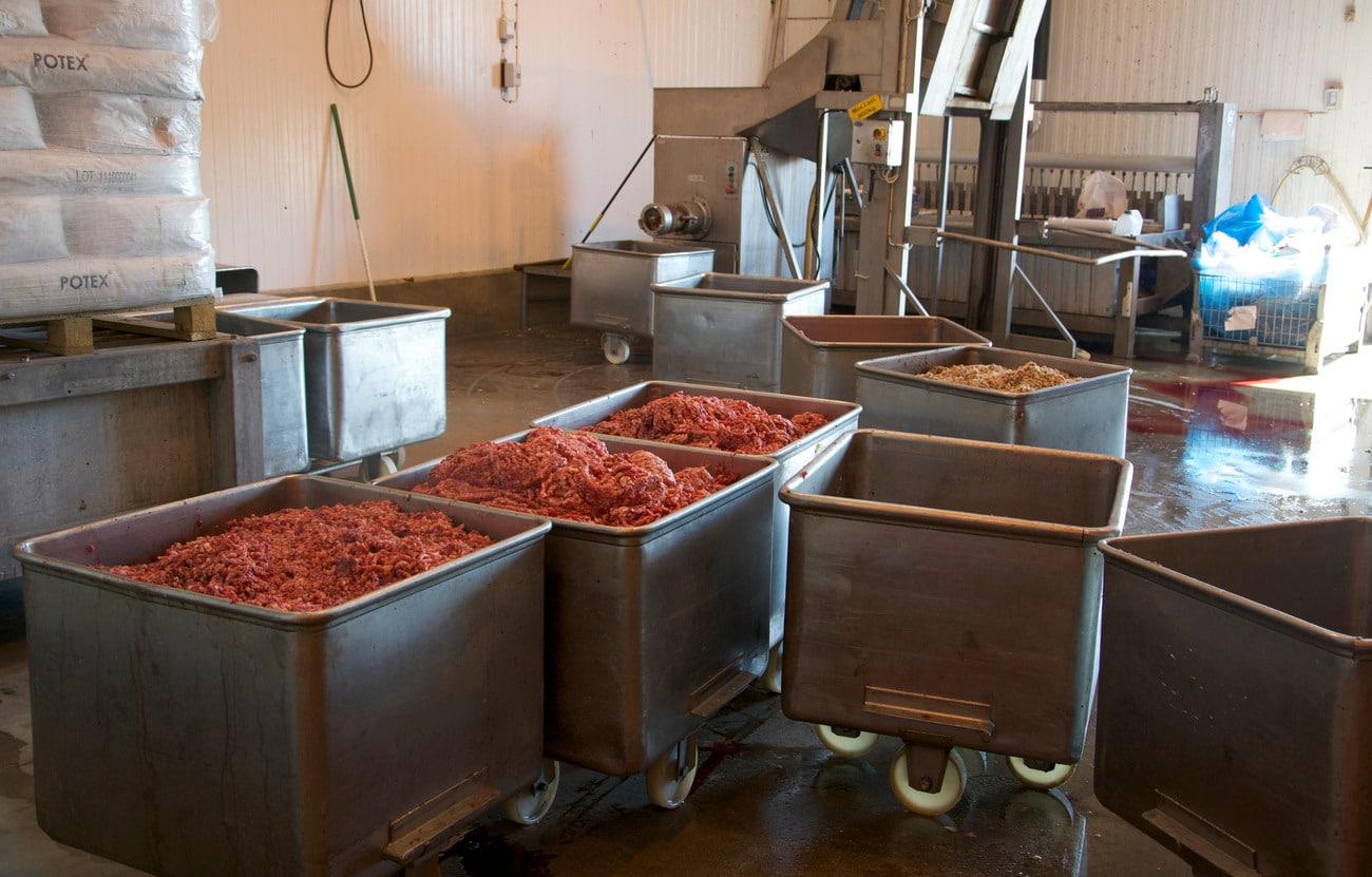 Råvarorna som ska bli färskfoder varierar i fett- och proteininnehåll, därför blir den råa hundmaten också något olika från gång till gång. Foto: Marie Gadolin