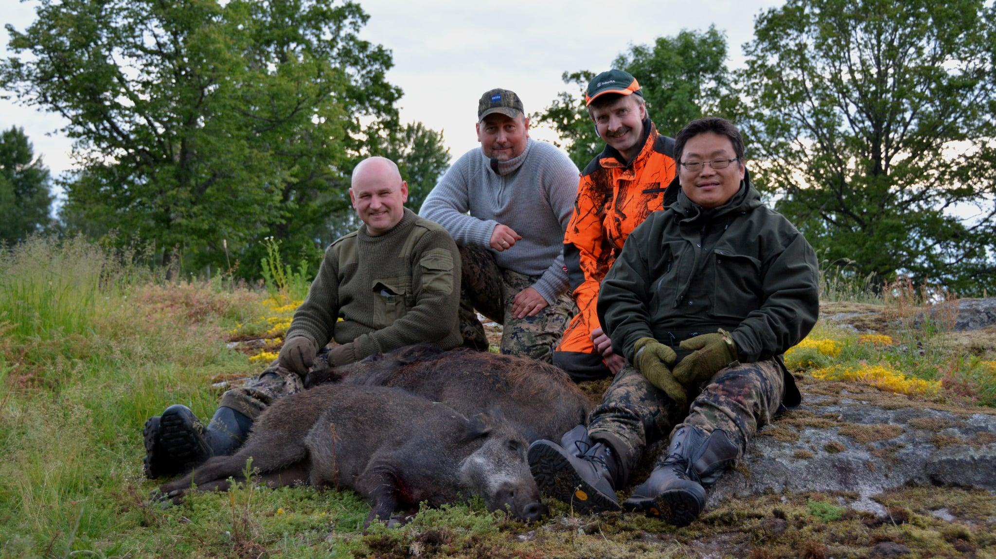 Från höger John Farbrot som sköt det tusende vildsvinet, markägaren Leif Franzén, jaktledaren för den norska gruppen Jon Arild Albrektsen, och Roger Abusland som sköt vildsvin nummer 1.001 en timme senare än det tusende fälldes. Foto: Privat