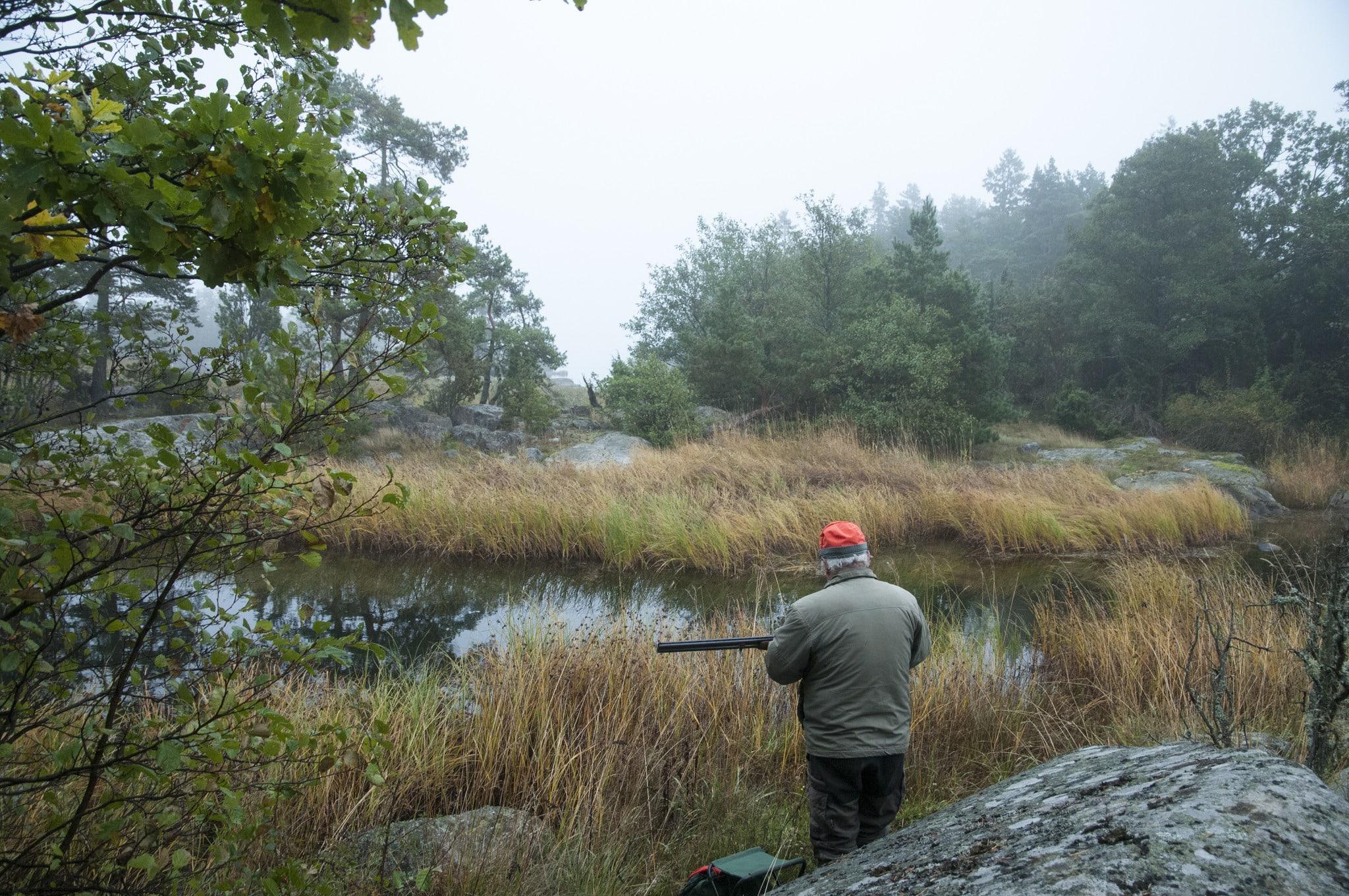Att ge WWF rätt att överklaga allt som rör jakt till domstol är inget som tilltalar debattören Hans Boström. Foto: Jan Henricson