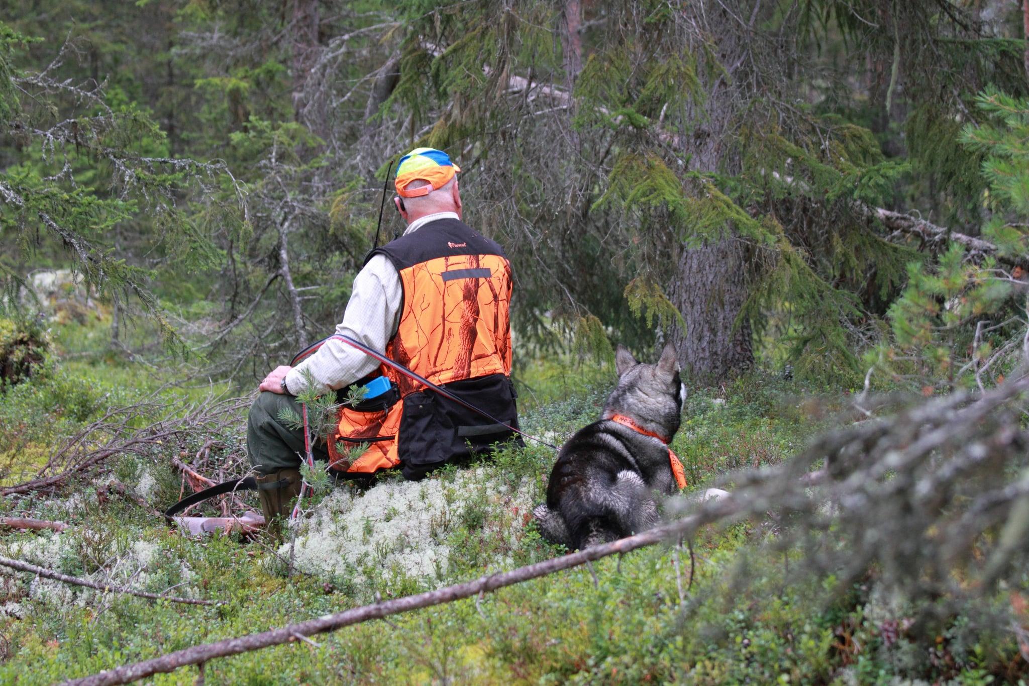 Tumma aldrig på säkerheten i jakten. Foto: Olle Olsson
