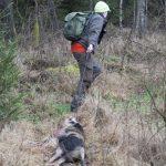 Jakt är inte bara nöje. Jägaren gör mycket nytta också. Det är hög tid att jägarna tar betalt för sina tjänster, anser debattören. Foto: Jan Henricson