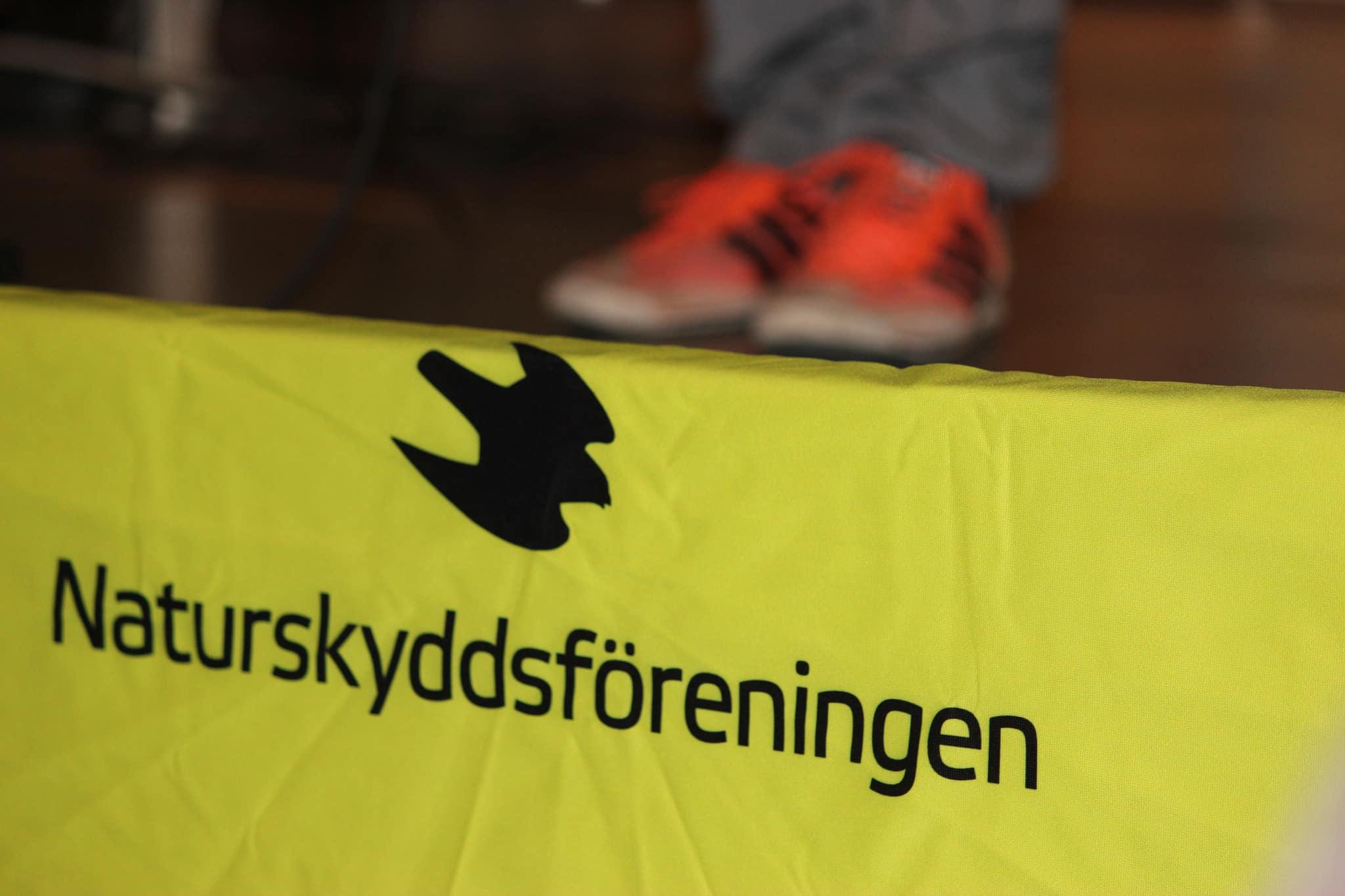 Naturskyddsföreningen har inte svenska folket bakom sig när man nu väljer att överklaga vargjakten igen, anser Mats S Johansson. Foto: Carl-Axel Fall