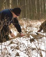 Länsstyrelsen i Jämtland säger nej till förlängda jakttider på rådjur och ripa. Foto: Olle Olsson
