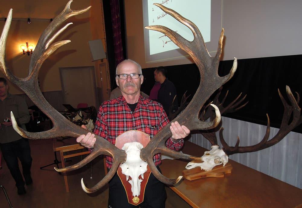 Lars-Göran Persson, Nordmaling, deltog i hornutställningen med den 16-taggare han sköt för några år sedan på Bredvik jaktklubbs marker, ett guldhorn på 213,6 poäng. Foto: Bernt Karlsson