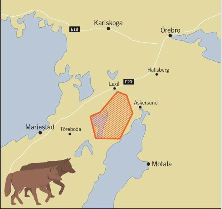 Minst fem vargvalpar har det flyttade vargparet i Tiveden fått. Karta: Naturvårdsverket