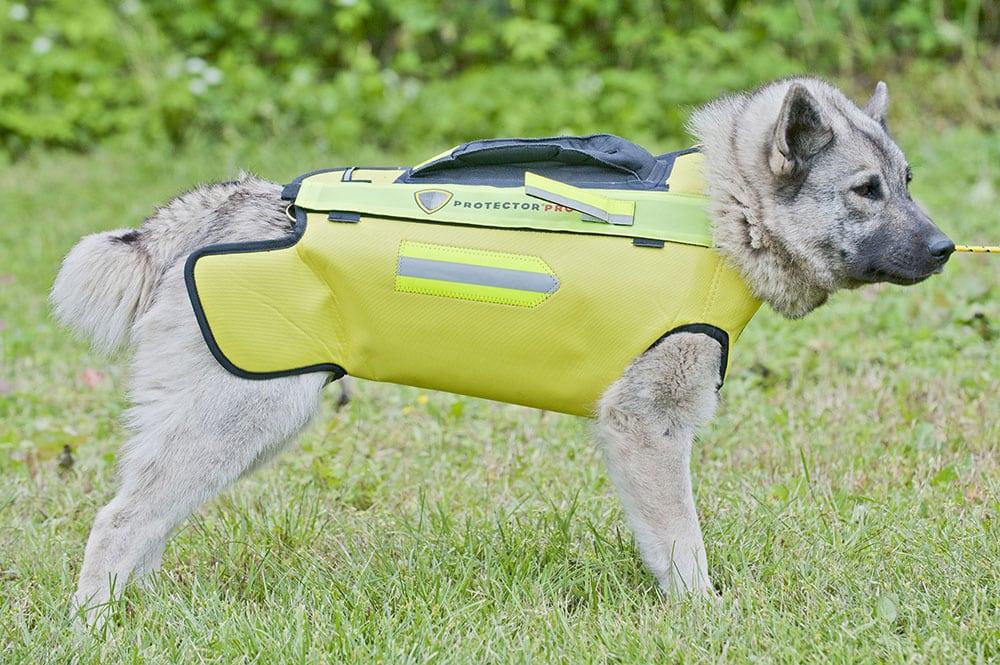 Vildsvinsvästen Protector. Foto: Mattias Lilja